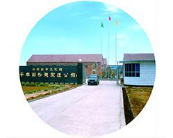 В 1991г. первоначальный вид компании «Пинлэ» - Чжэндинский завод по ремонту мукомольного аппарата «Пинлэ» был создан