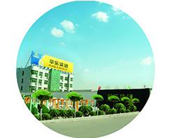 В 2003г. была создана ООО Хэбэйская компания по производству мукомольного аппарата «Пинлэ»