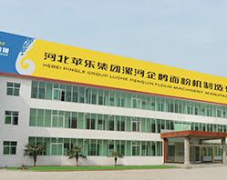 В 2004г. покупка в виде стопроцентного капитала компании ООО Лохэскую по производству зерновых и масляных машин «Циэ» в провинции Хэнань