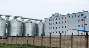 Объект по переработке пшеницы 200 т/сут. «под ключ» в Камеруне